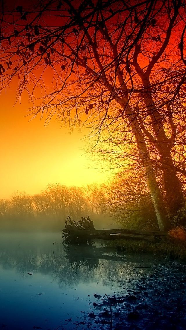 Nature wallpaper iPhone