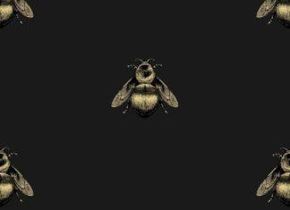 Timorous Beasties Wallcoverings - Napoleon Bee Non Woven wallpaper