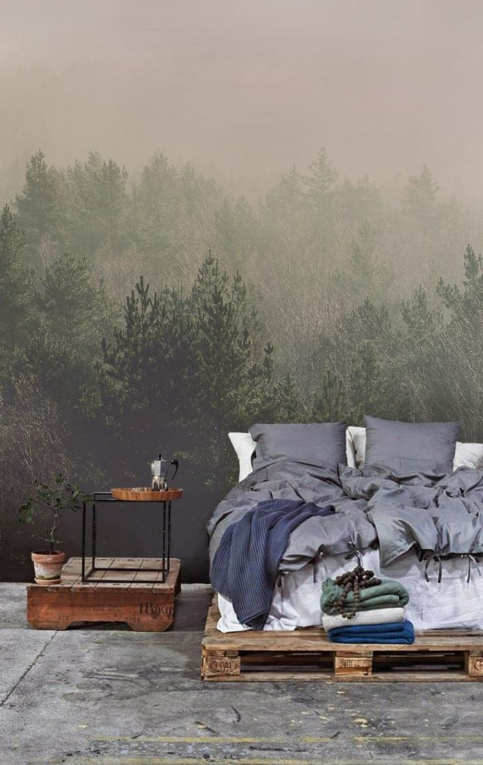 Forest Wallpapers murals that help to bring natural beauty straight into your ho...