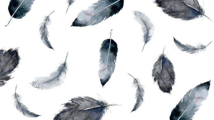Feather // Free wallpaper // Simple + Beyond // simplebeyond.com/...