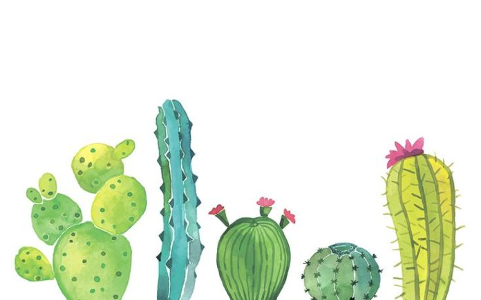 Obviously I need a cactus desktop background.