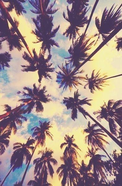 a les vacances au paradie