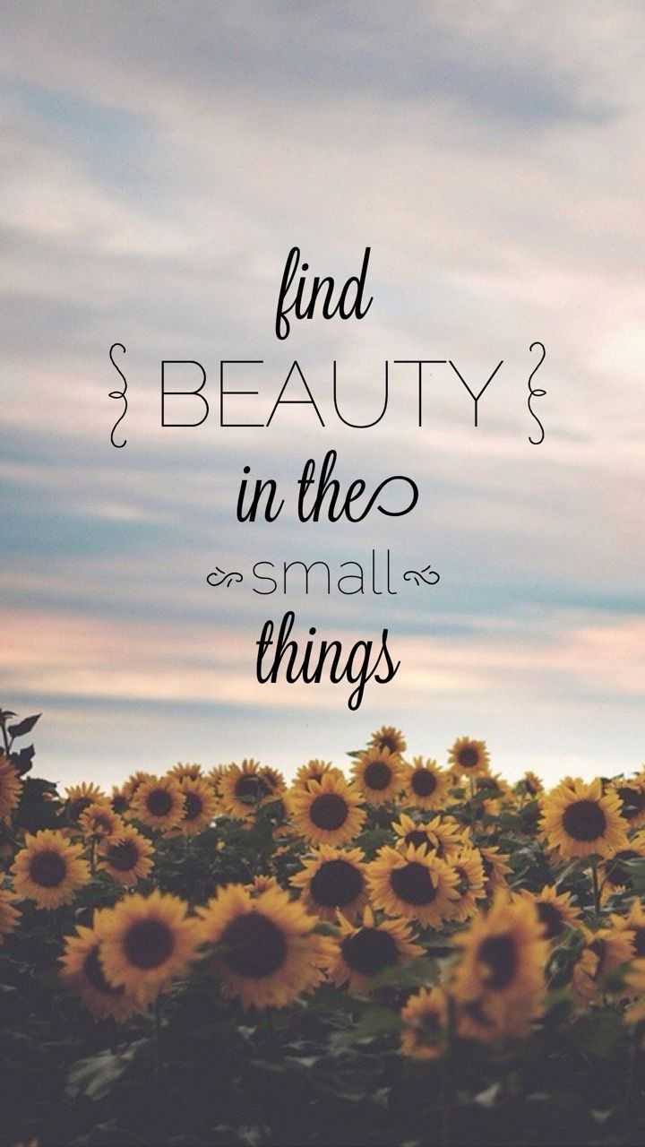 Find Beauty In The Small Things Galaxy S3 Wallpaper 720x1280
