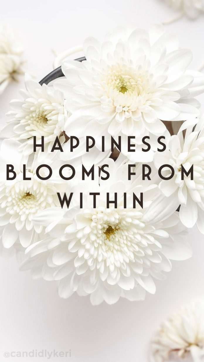 iphone wallpaper happiness blooms from within daisy flowers