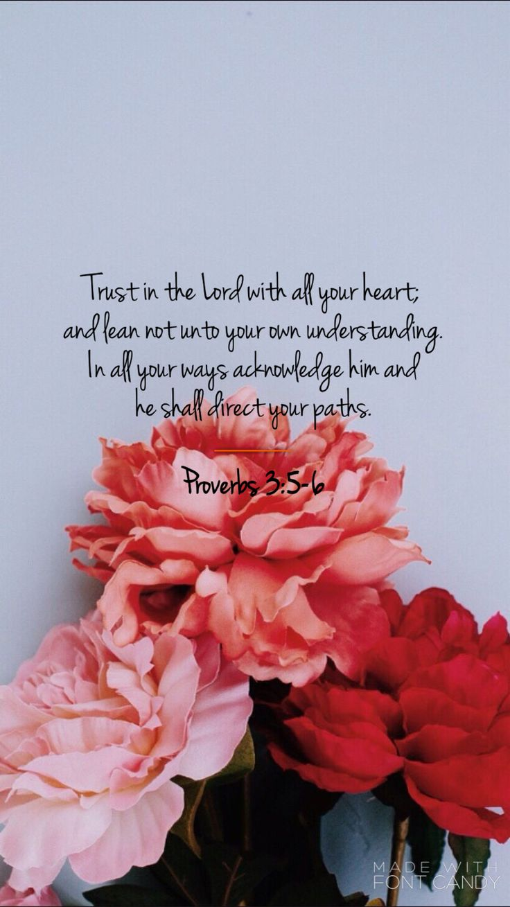 Iphone Wallpaper Proverbs 35 6 Trust In The Lord Iphone