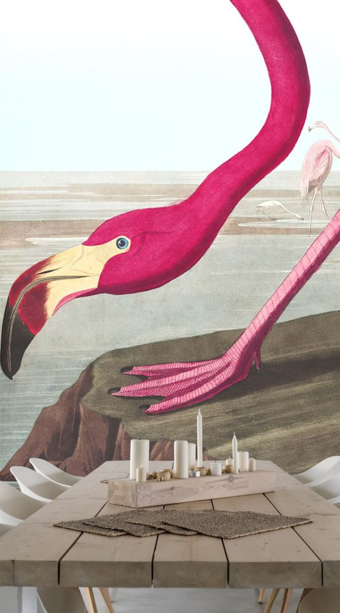 Brighten up any space with this lovely Pink Flamingo Wallpaper mural. Its vibran...
