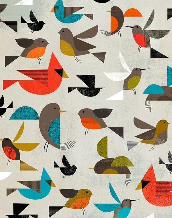 birds  beautifulbirdofpa...