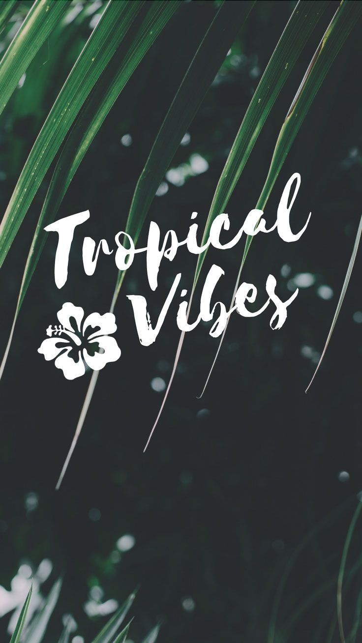 Phone Celular Wallpaper Tropical Vibes Quote Iphone 7 Plus