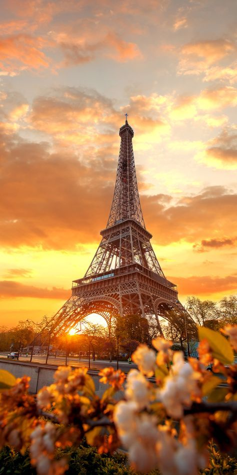 Phone Celular Wallpaper Eiffel Tower Paris Wallpaperart Net