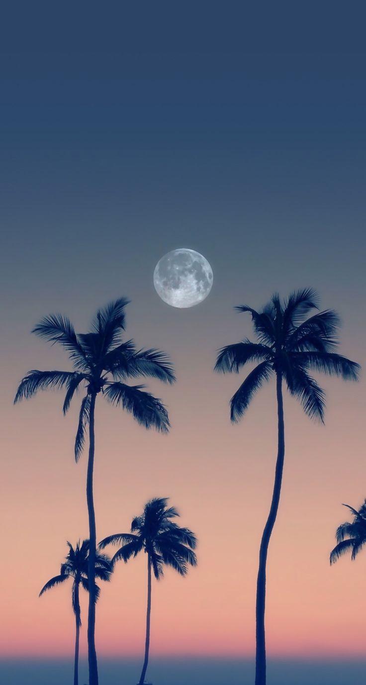 Phone Celular Wallpaper Moon Backgrounds