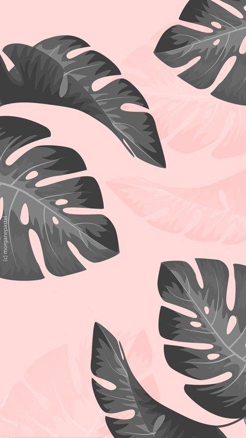 wallpaper palmier tropical black pink