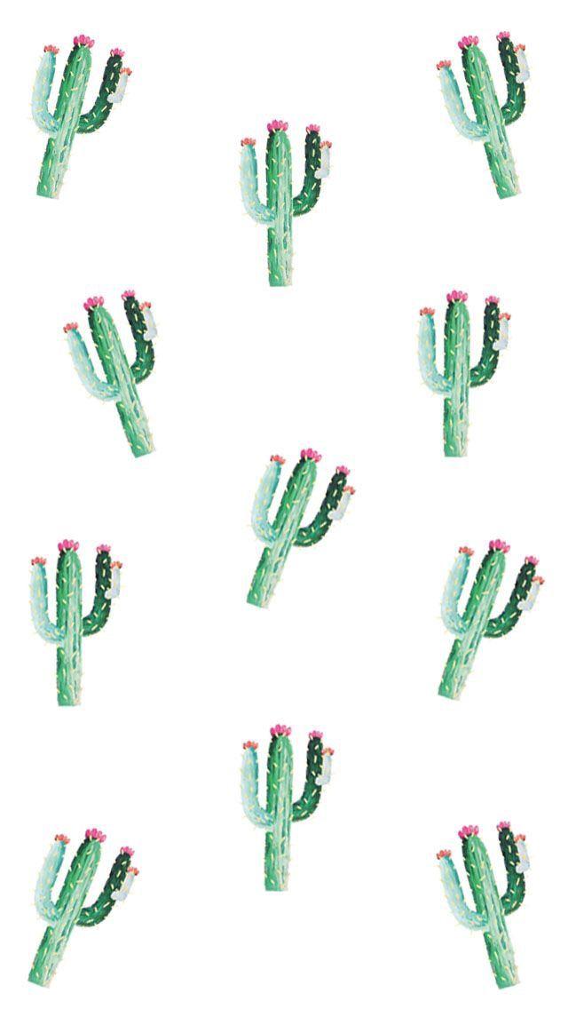 wallpaper - phone - fond d'écran - cactus - été - summer
