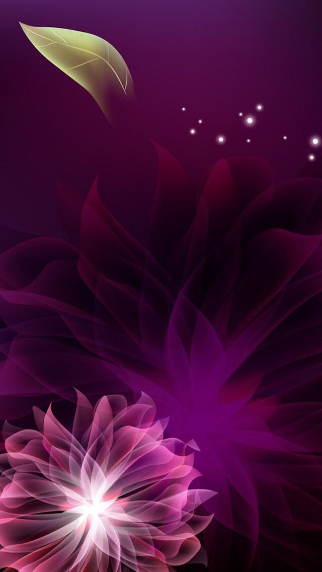 Wallpapers#flowers#iPhone