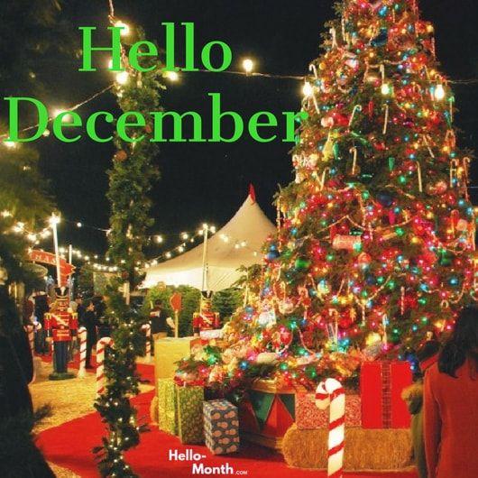 Hello December Wallpaper