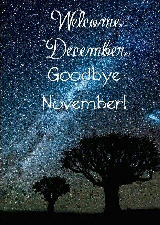 Hello December. Goodbye November ❣❣❣