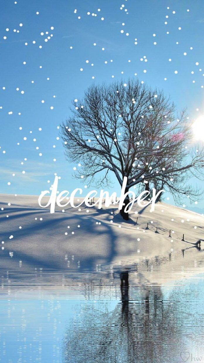 Hello December. wisp #holiday #snow #winter #quote #wallpaper #december