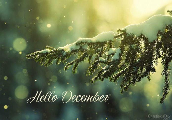 Image result for hello december images