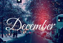 christmas, cold, cute, december, lights, new year, snow, typhography, winter
