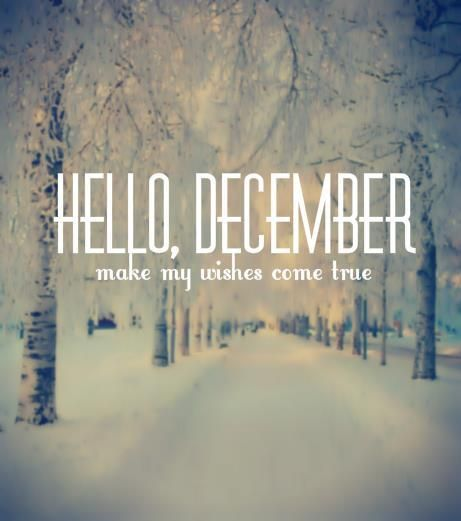 hello december |Joy, Christmas, good food and cold with snow.....