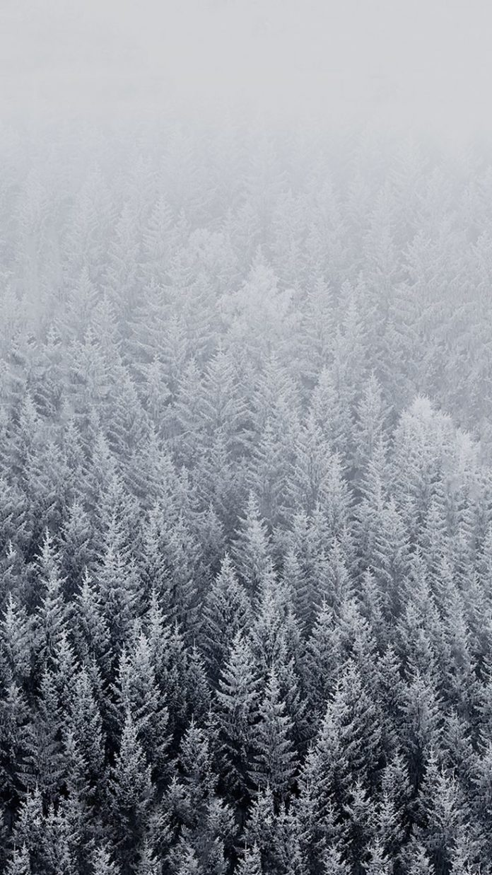 HD Winter Background for Iphone.