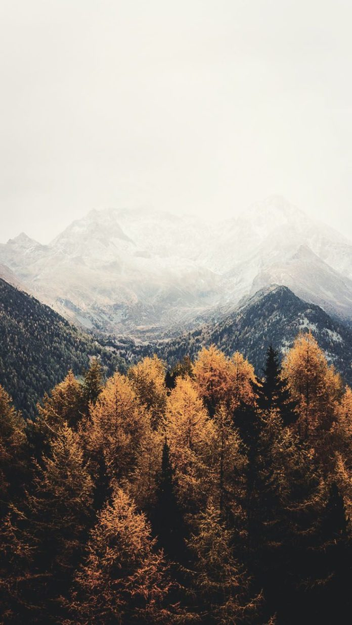 Happy Fall iPhone Wallpaper Collection by PreppyWallpapers