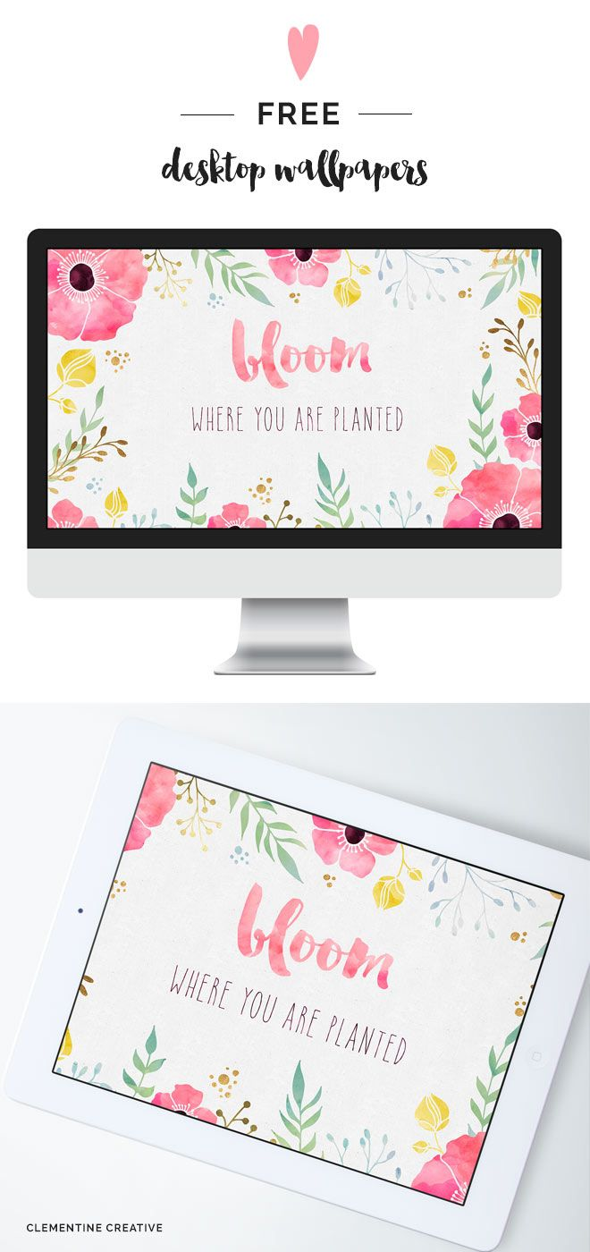 Free Desktop Wallpaper - Bloom Where you are Planted - Clementine Creative   DIY...
