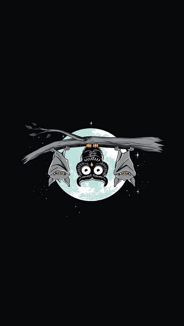 Night Owl - cute funny iPhone wallpaper mobile9