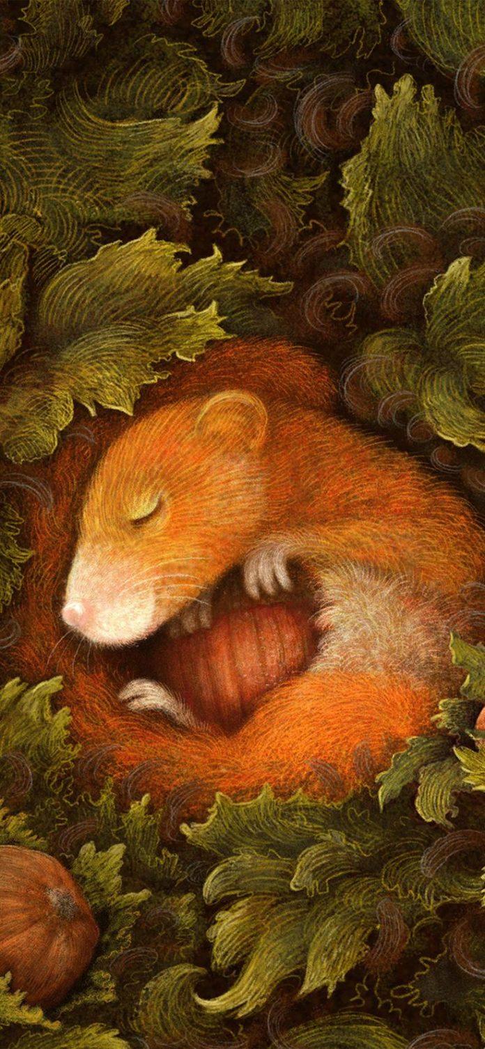 bf93-cute-squirrel-art-animal-illustration-anime via iPhoneXpapers.com - Wallpap...