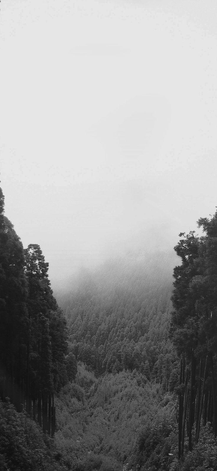 Iphone X Wallpaper Mq89 Mountain Mirror Green Wood Nature Dark Via