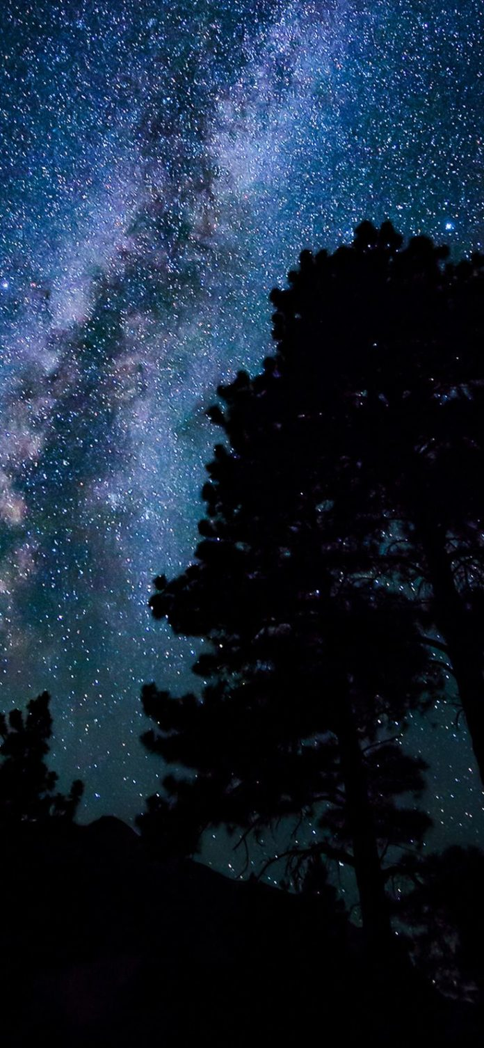 nx78-night-sky-dark-star-nature via iPhoneXpapers.com - Wallpapers for iPhone X