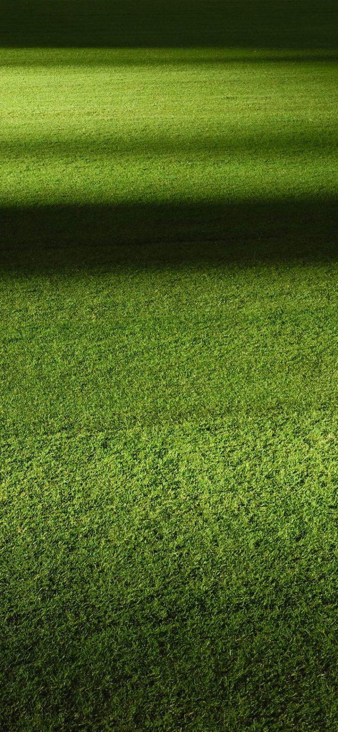 wa59-field-green-night-grass-pattern-background via iPhoneXpapers.com - Wallpape...