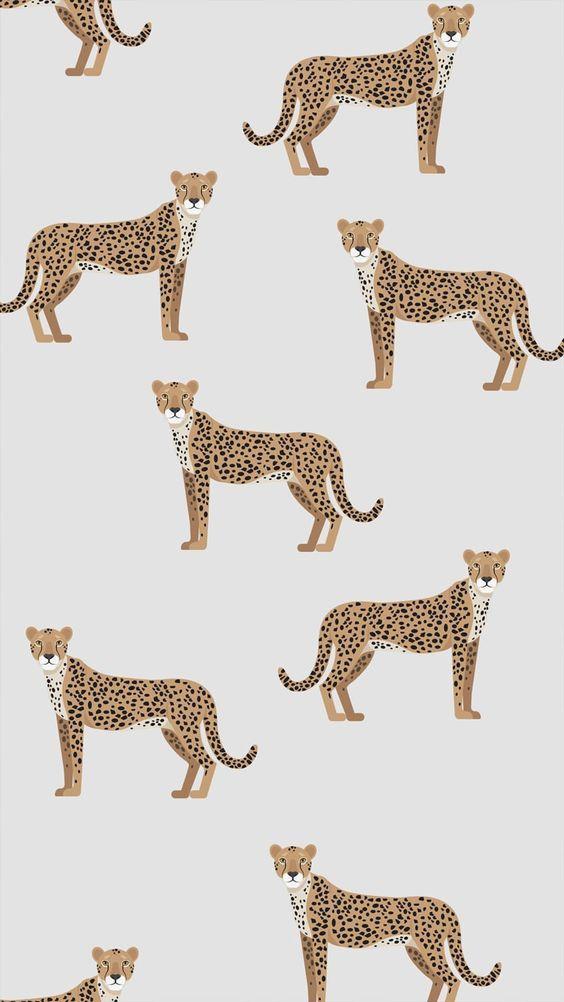 Des léopards sur nos murs... Quand on vous dit que le papier peint fait tout ! ...