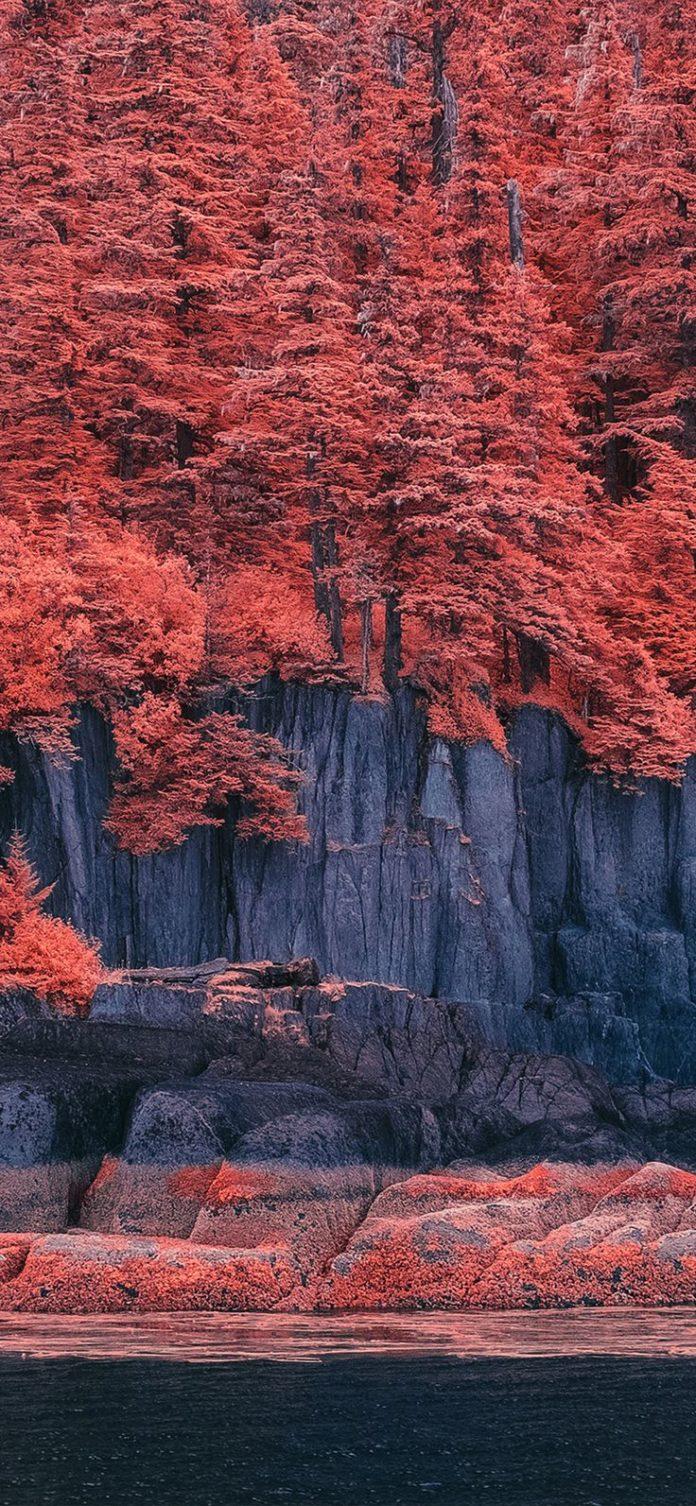 bd41-mountain-red-tree-nature-art-illustration via iPhoneXpapers.com - Wallpaper...