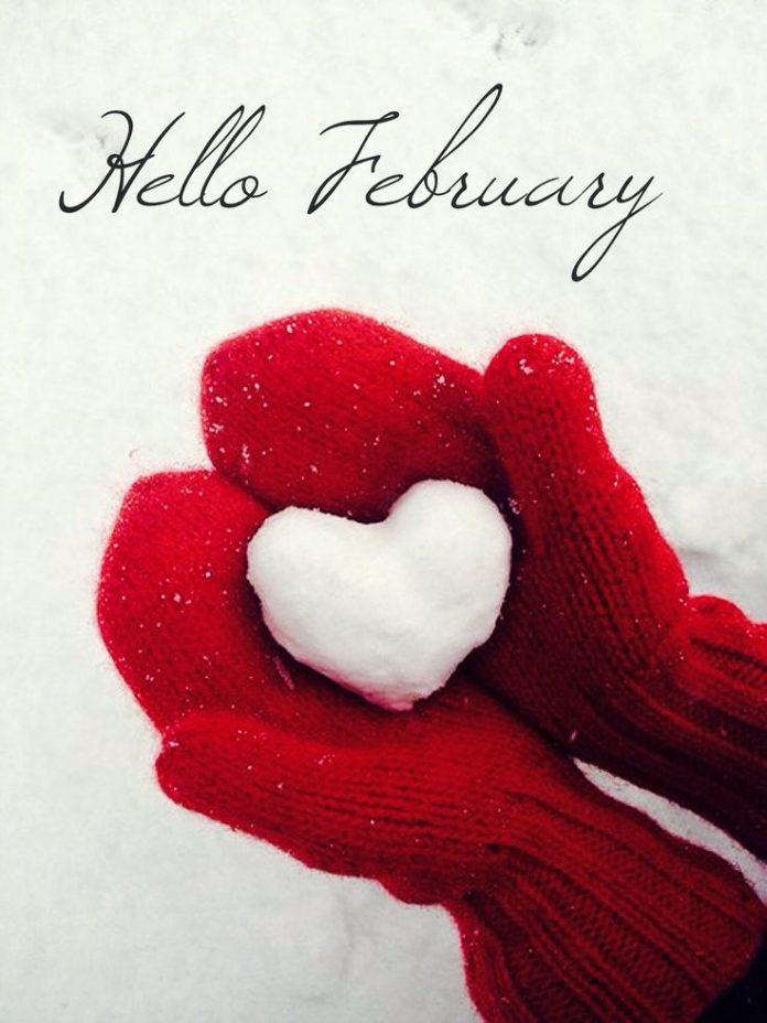 Hello February  ~2016~