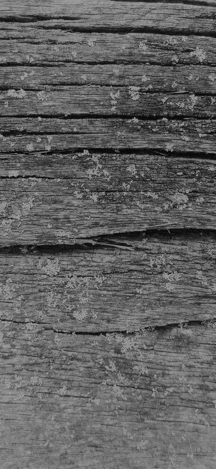 vj33-wood-art-nature-pattern-dark-bw via iPhoneXpapers.com - Wallpapers for iPho...