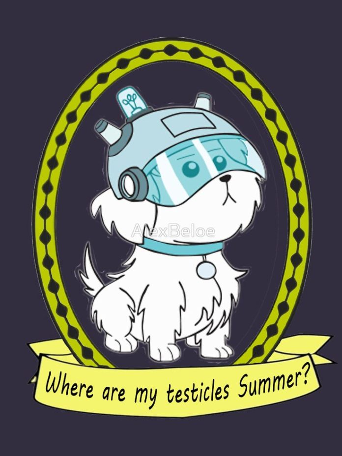 t-shirt where are my testicles summer - Rick and Morty www.redbubble.com/people/...