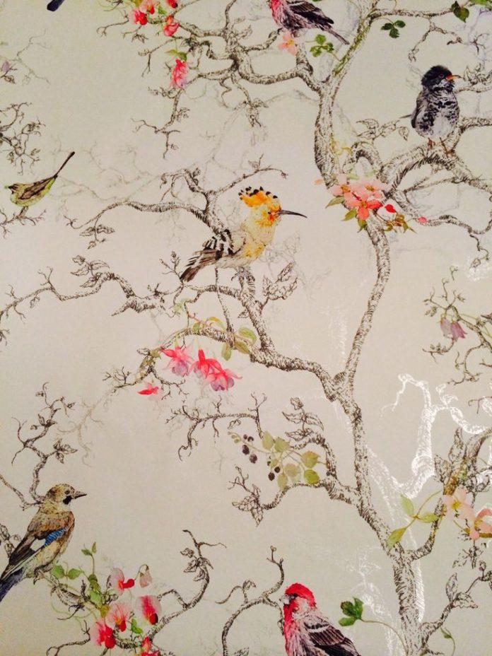 B&Q wallpaper birds. I love this one! neeeeeeeeeeeeed it