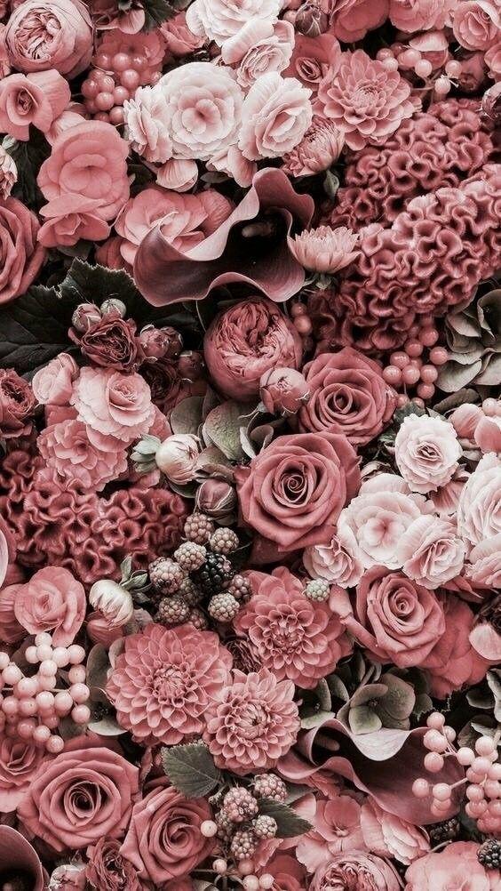 Wallpaper com flores em tons de rosas ...