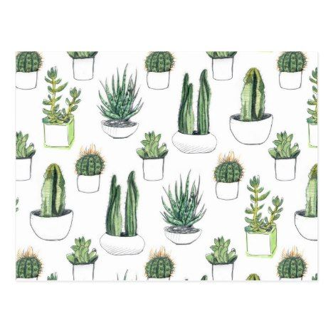 Watercolour Cacti & Succulent Postcard | Zazzle.com