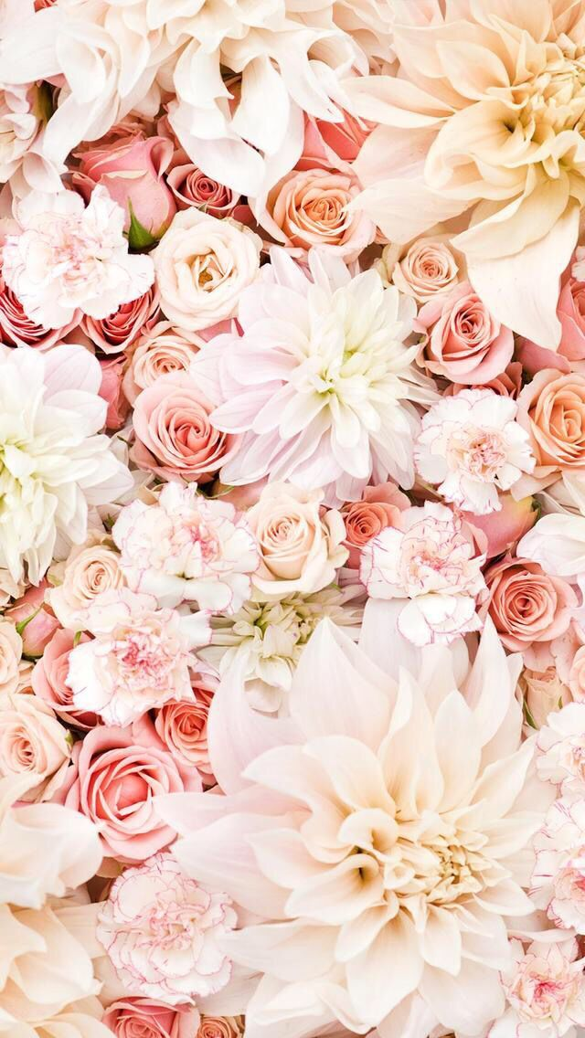 awesome Flower flowers iphone wallpaper Tumblr-30